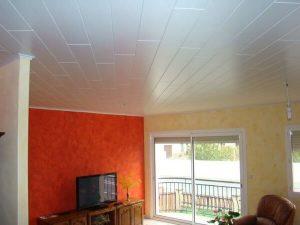 Pose de lamelles de bois au plafond pour l'agencement intérieur sur Les Herbiers par Merlet Luc